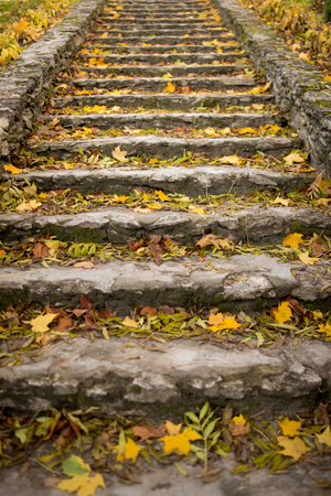 Stone stair path through fall colored trees