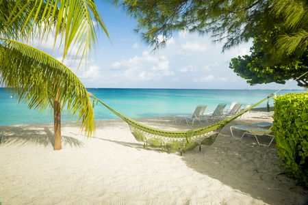 caribbean beach: Hammock on a caribbean beach