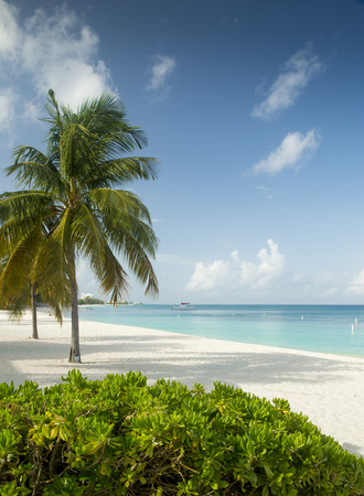 miles: Seven Miles Beach on Grand Cayman Island Stock Photo