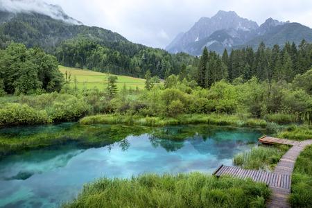 gora: Zelenci pond near Kranjska Gora, Slovenia