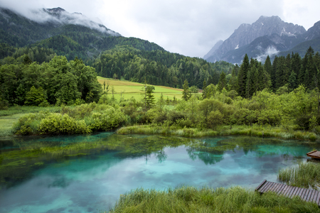 glades: Zelenci pond near Kranjska Gora in Slovenia Stock Photo