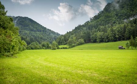 Hermosa pradera rodeada de montañas Foto de archivo - 62779731