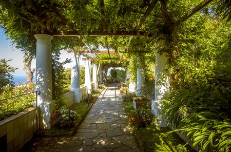 Les jardins de Villa San Michele, île de Capri, Italie Banque d'images - 69577015