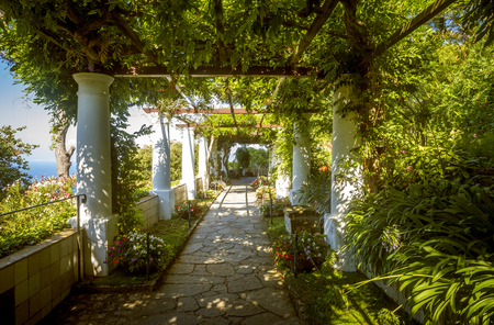 The gardens of Villa San Michele, Capri island, Italy