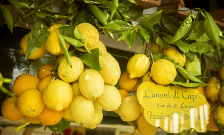 Lemons with text Stock Photo