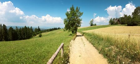 panorama of gorce mountains in Poland