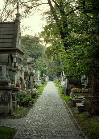 Pathway on an old cemetery