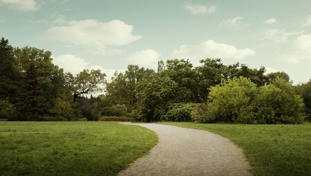 Panorama of public city park with footpath