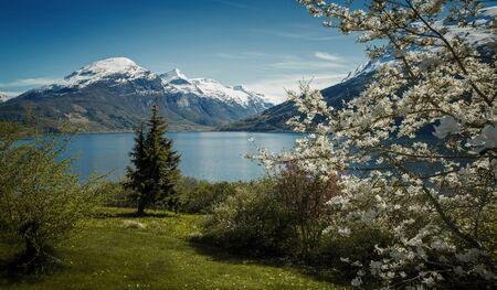 Panorama of Nordfjord in springtime, Norway