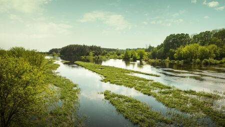 Panorama of Biebrza river in Biebrza National Park, Poland