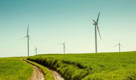 Wind turbines farm, renewable energy