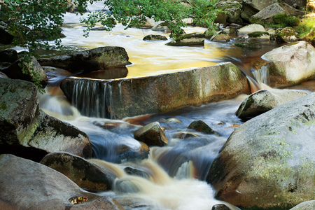 czech republic: River Vydra in Sumava National Park, Czech Republic