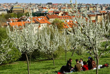 Prag, Tschechische Republik, 10. April 2011: Die Menschen genießen sonnige Wetter, Frühling und blühen auf Petrin Hügel Bäume am 10. April 2011 in Prag, Tschechische Republik Standard-Bild - 57382049