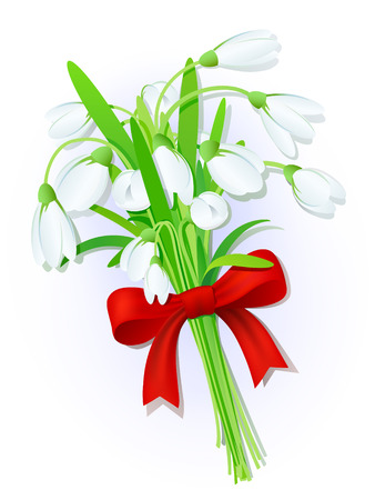 snowdrops: Bouquet of snowdrops with a red bow
