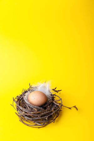 Easter egg in nest on yellow background