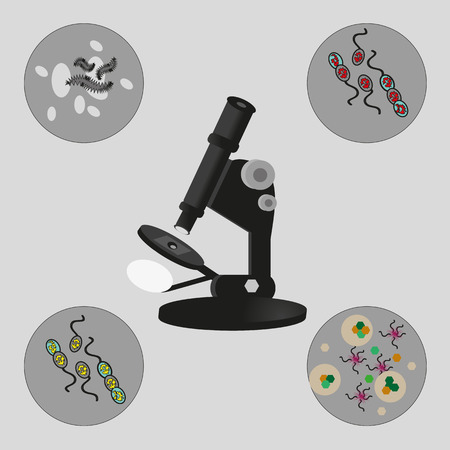 bacteria microscope: Illustration of Microscope, bacteria and viruses.  Vector. Illustration