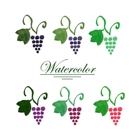 bunches: Set of six colorful watercolor grape bunches