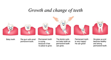 Growth and shift teeth in humans. Stages of development of teeth. Children multiplekatsionny style. Infographics.