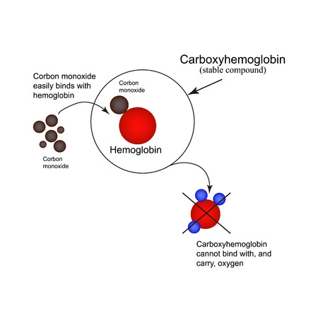 carbon monoxide: Carboxyhemoglobin. Joining the hemoglobin carbon monoxide. The inability to transport oxygen. Carbon monoxide poisoning. Infographics. Vector illustration.