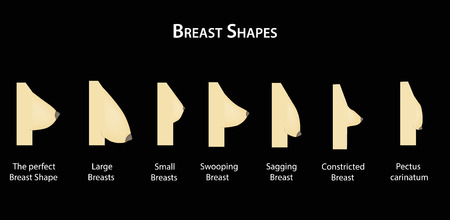 Shape the breast.
