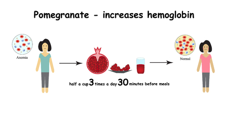 hemoglobin: Anemia. The reduced amount of red blood cells. Garnet increases hemoglobin in the blood. Infographics. Vector illustration.