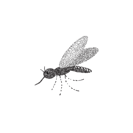 Mosquito on the isolated background. Hand drawing. Sketch drawing. Vector illustration.