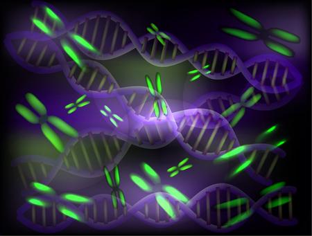 Background of chromosomes and DNA molecules. Vector illustration Illustration