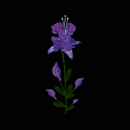 Beautiful lilac flowers fuchsia. Embroidery of jeans. Embroidery is smooth. illustration on a black Ilustrace