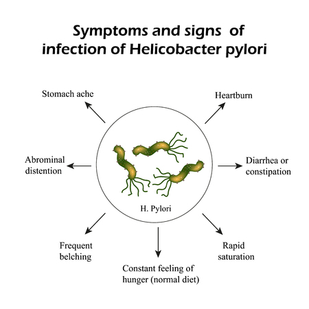 Helicobacter pylori. Symptoms of infection. Infographics Vector illustration