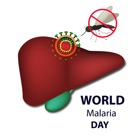 World Malaria Day. Mosquito bans the sign. Liver, malaria virus. Infographics. Vector illustration on isolated background Illustration