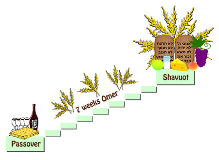 Feast of Shavuot, the counting of the Omer between the Passover and the Shavuot. Wine, matzo, fruit, milk, cheese. Scrolls of the torah, tablets of the bible, ten commandments vector illustration. Çizim