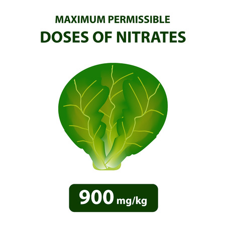 The maximum allowable dose of nitrates in cabbage. Nitrates in vegetables and fruits. Ilustração