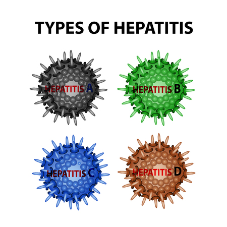 Types of Hepatitis. Viruses Hepatitis A, B, C, D. Infographics. Vector illustration on isolated background