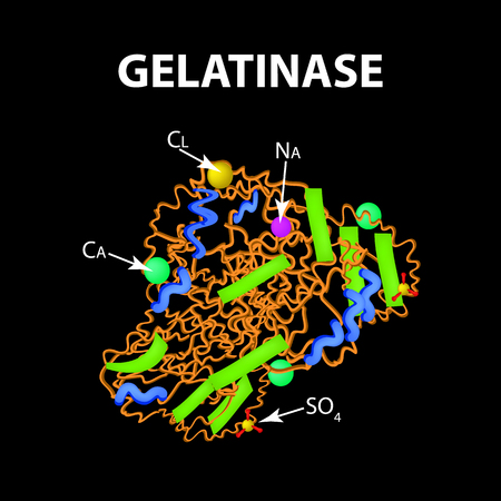 Gelatinase is a molecular chemical formula.