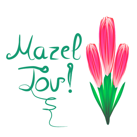 Greeting inscription Mazel Tov translated from Hebrew I wish you happiness. A bouquet of tulips. Vector illustration on isolated background. Ilustração