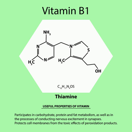 Vitamin B1. Thiamine Molecular chemical formula. Useful properties of vitamin. Infographics. Vector illustration on isolated background. Vettoriali
