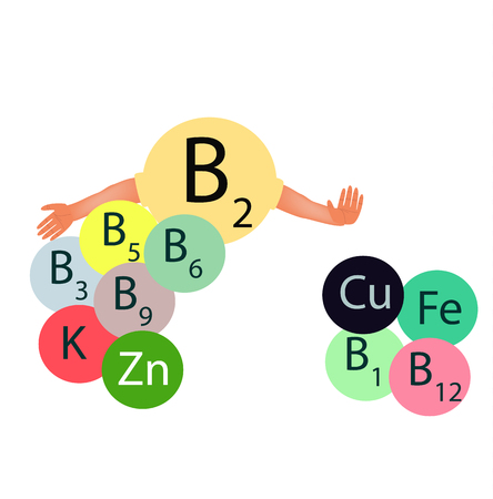Vitamin B2 compatibility with other vitamins and minerals. Infographics. Vector illustration on isolated background.