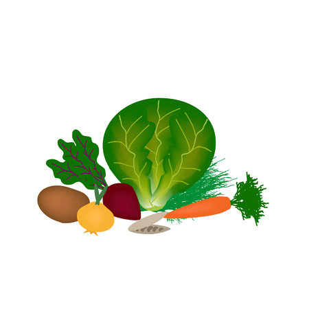 Vegetables for red borscht on an isolated background. Cabbage, carrots, onions, potatoes, beets, fennel, beans . Vector illustration.