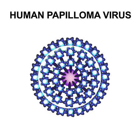 Human Papilloma Virus. The structure of the virus popilloma. Infographics. Vector illustration on isolated background.  イラスト・ベクター素材