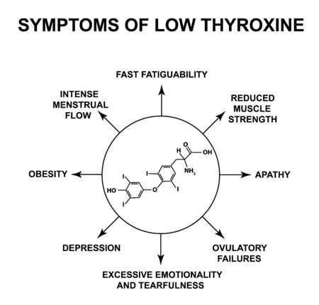 Symptoms of low thyroxine. Thyroxine thyroid hormone. Infographics. Vector illustration on isolated background