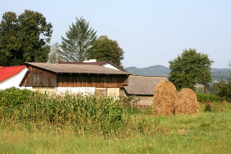 Village house. Countryside. House with a garden. Corn. A stack of hay.
