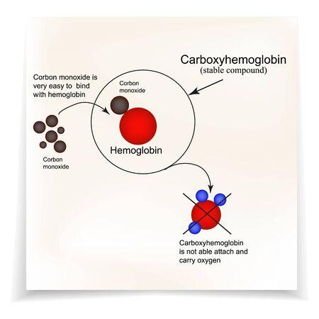 Carboxyhemoglobin. Joining the hemoglobin carbon monoxide. The inability to transport oxygen. Carbon monoxide poisoning. Infographics. Vector illustration