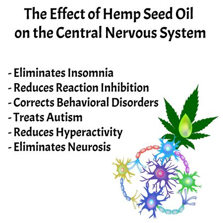 The effect of hemp seed oil on the central nervous system. Synapses of neurons. Neural communications background. Synapse communication neuron. Vector illustration on isolated background. Ilustracja