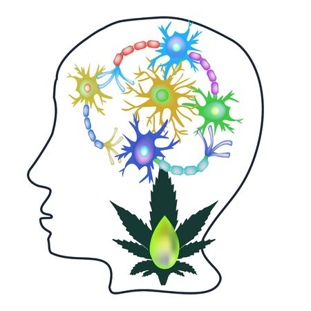 The effect of hemp seed oil on the central nervous system. Synapses of neurons. Neural communications background. Synapse communication neuron. Vector illustration on isolated background. Stock Illustratie