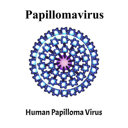 Papilloma is a human virus structure. Papilloma virus infection. Sexually transmitted diseases. Infographics. Vector illustration on isolated background.