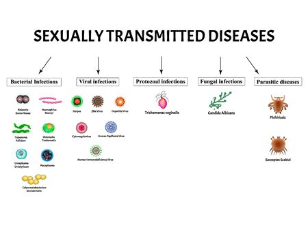 HIV, herpes, papilloma, hepatitis, cytomegalovirus, Zika. Set viral infections. Syphilis, Gonococcus, Chlamydiosis, Chlamydia, Mycoplasma, Ureaplasma Bacterial. Sexually transmitted diseases. Vector