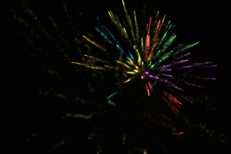 Salute in the sky. Firework brilliant and bright.