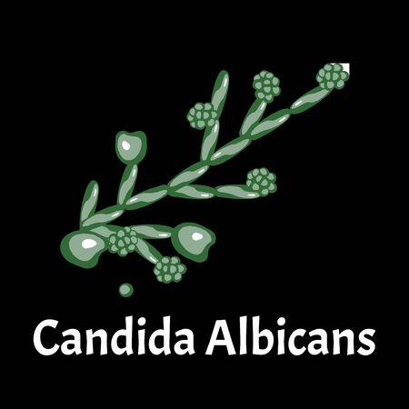 Candida. Candidiasis. Infographics. Vector illustration on isolated background. Illustration
