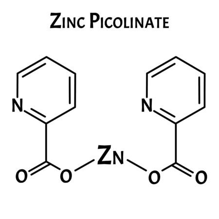 Zinc picolinate molecular chemical formula. Zinc infographics. Vector illustration on isolated background. Vectores