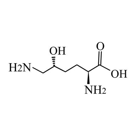 Hydroxylysine is an amino acid. Chemical molecular formula Hydroxylysine amino acid. Vector illustration on isolated background